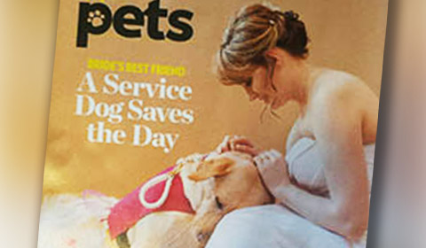 Service Dog Saves The Day