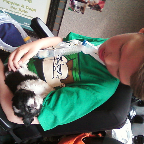 Young boy with his service dog, a Shih Tzu, from my breeding program.
