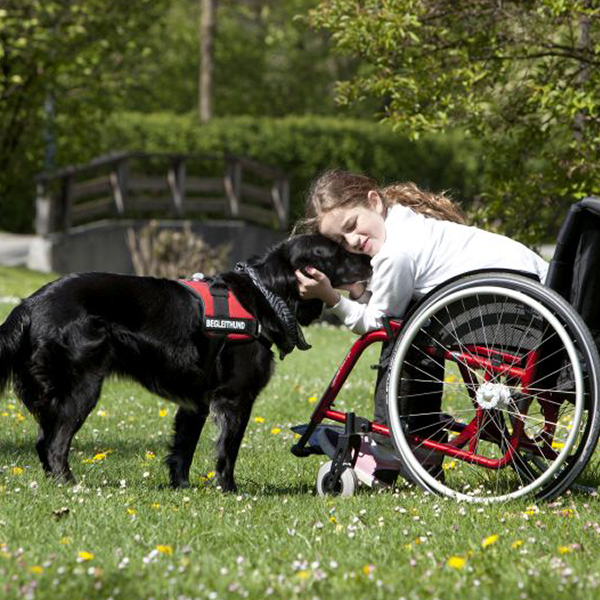 Girl with a Service Dog